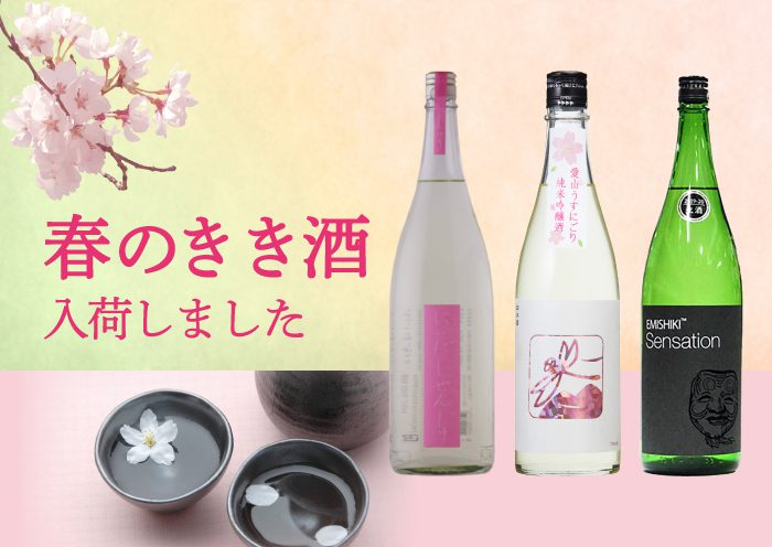 春のオススメ日本酒入荷!