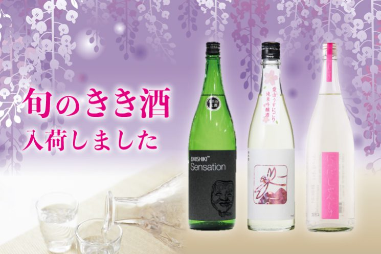 季節のオススメ日本酒入荷!